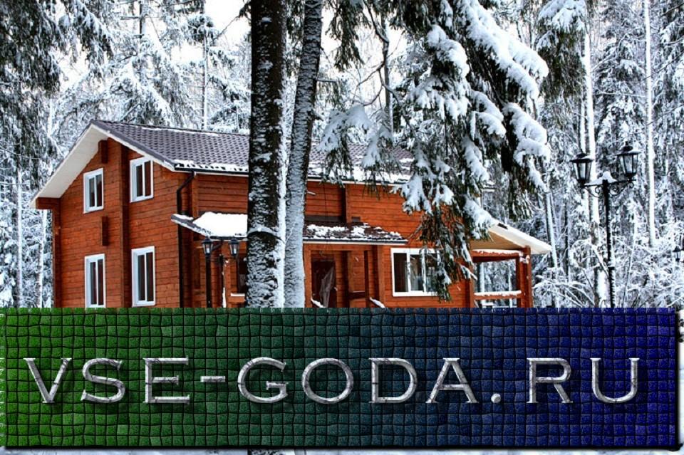 novyj-2019-god-v-podmoskove-6